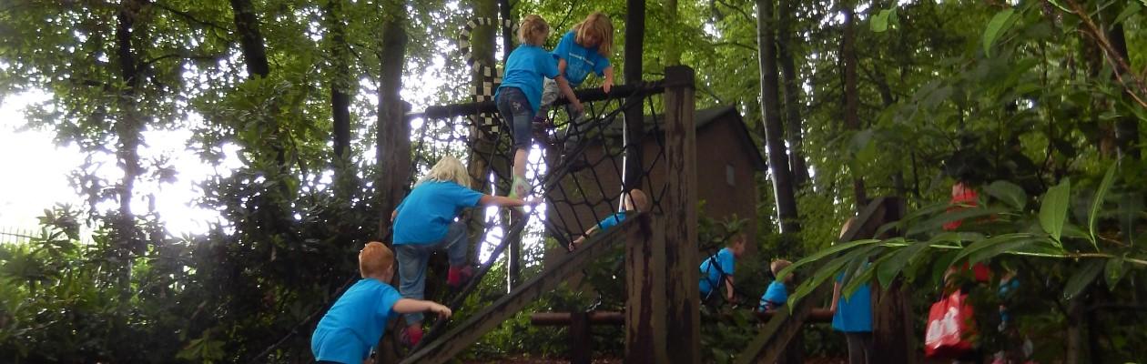De website van Scouting Lambertus uit Etten-Leur met informatie over onze groep.